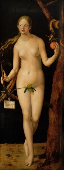 Eve by Albrecht Dürer