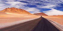 Desert road through the Altiplano, Chile, altitude 4700m by Sara Winter