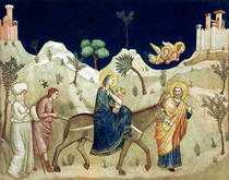 The Flight into Egypt  von Giotto di Bondone