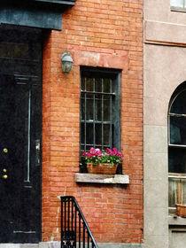 Chelsea Windowbox von Susan Savad