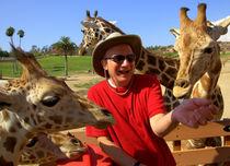 Giraffits