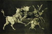 Folly of the Bulls, from the Follies series by Francisco Jose de Goya y Lucientes
