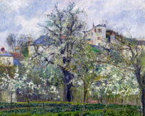 The Vegetable Garden with Trees in Blossom, Spring, Pontoise von Camille Pissarro