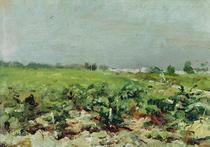 Celeyran, View of the Vineyard von Henri de Toulouse-Lautrec