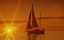 Sunset Cruise by David Halperin