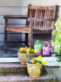 Pansies and Watering Cans on Steps by Susan Savad