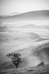Adur-valley-mist
