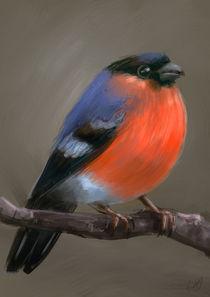 151010-birdorange