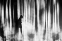 Caught in the sorrow by Stefan Eisele