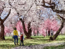 Lovely Spring Day For a Walk by Susan Savad
