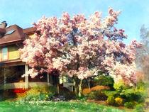 Fa-magnolianeargreenhouse
