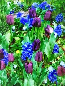 Spring Garden in Shades of Purple by Susan Savad