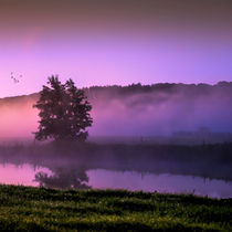 Herbstmorgen // colorful morning by Marcus Hennen