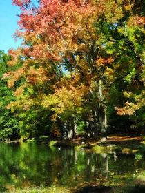Fa-autumnreflections2