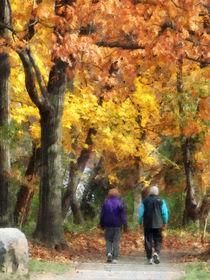 Autumn Stroll by Susan Savad