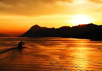 Into the sun von Sondre Fagervoll-Stavik
