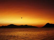 Winter sunset von Sondre Fagervoll-Stavik