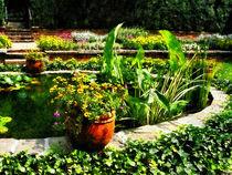 Fa-gardenpond2