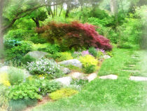 Garden With Japanese Maple by Susan Savad