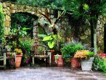 Fa-patiogardenintherain