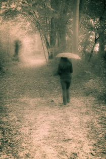 A walk in the woods under the rain... von Benjamin Gaie