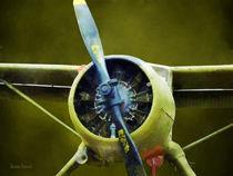 U-6A Beaver by Susan Savad