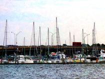 Fa-dockednorfolkva