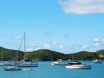 Caribbean - Peaceful Sea St. Thomas by Susan Savad