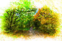 The Early Autumn Forest by David Pyatt