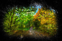 The Early Autumn Forest Vignette  by David Pyatt