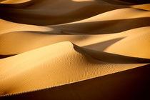 Desert-sand-dunes-108