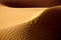 Desert-sand-dunes-113