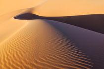 Morocco-desert-sand-dunes-151
