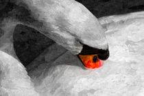 Oil-pop-swan