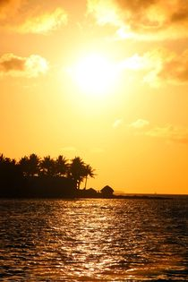 Romantischer Sonnenuntergang in Key West by ann-foto