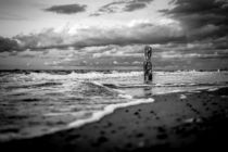 Buhne an der Küste der Ostsee von Rico Ködder