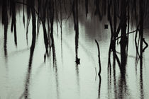 Hidden Place by Elias Branch