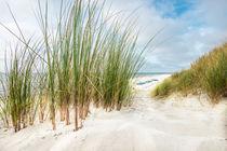 20150810-20150810-17-31-25-hcp-3627-beach-scenery-kopie-1