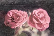 A pair of roses in sketch1 on dark background