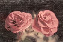 A pair of roses in sketch2 on dark background