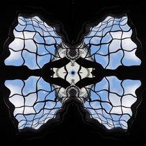 Blauhimmelfensterfluegel-2