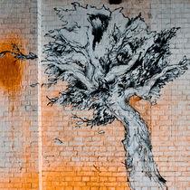tree on bricks von Ralf Ketterlinus