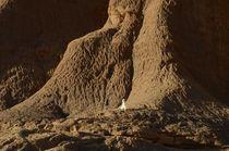 Am Fuße des Ennedi-Gebirges von ysanne