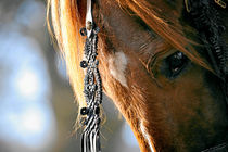 Goldene Gidrans von cavallo-magazin