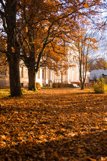 Autumn Leaf Carpet by Janis Upitis