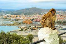 Gibraltar von gscheffbuch