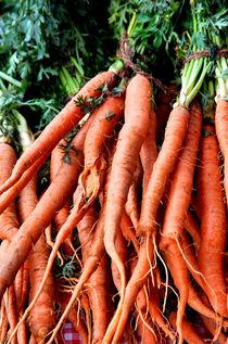 Carrots by Katia Lima