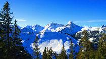 Bergwelt-i