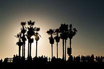 Abendstimmung am Venice Beach Los Angeles von Christian Hallweger