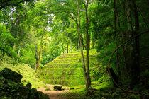 Mystische Mayaruine Yaxchilán in Guatemala inmitten des Dschungels von Marita Zacharias